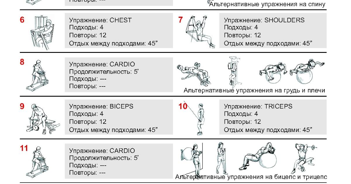 Сколько раз в неделю тренироваться —и как быстро восстанавливаются мышцы?