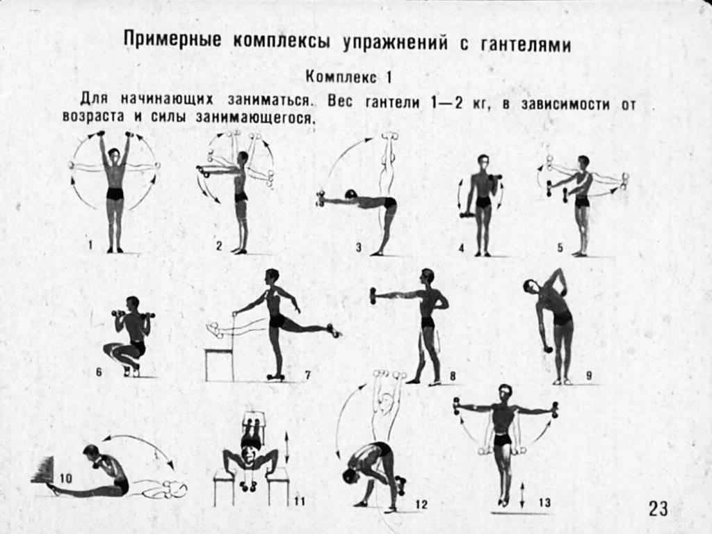 Упражнения с гантелями в домашних условиях для мужчин и женщин