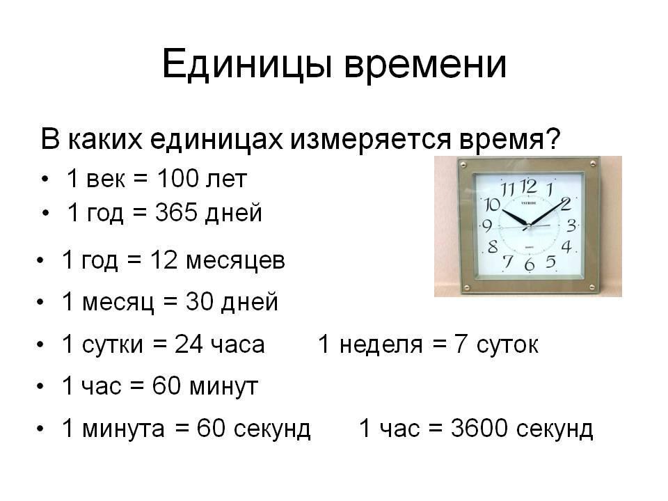 Диета по часам – есть через каждые 2 часа: правила, меню, отзывы и результаты