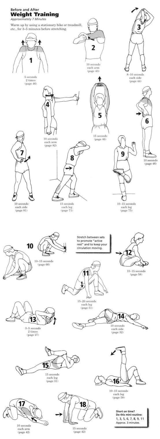 Растяжка перед тренировкой в тренажерном зале,растяжка во время тренировки,растяжка и силовые тренировки,когда делать растяжку до или после тренировки,стретчинг до/перед тренировки,динамическая растяжка упражнения