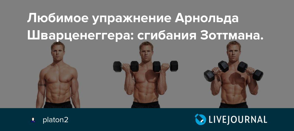 Сгибания зоттмана - упражнения для силы и массы мышц рук