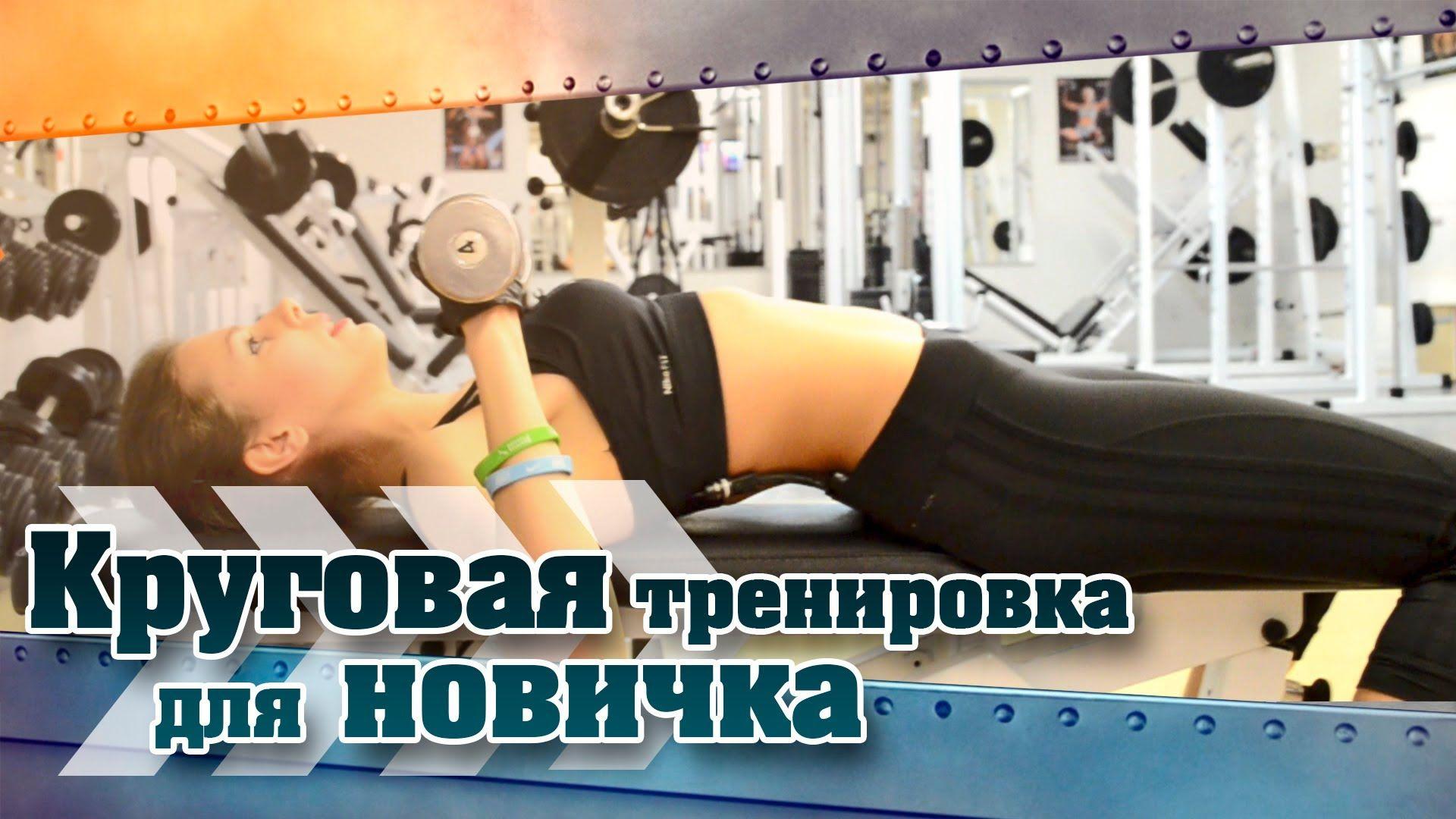 Круговая тренировка для девушек новичков в тренажерном зале