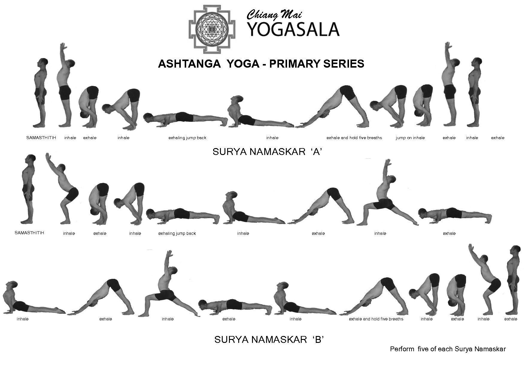 Лучшие асаны и комплексы хатха-йоги для начинающих