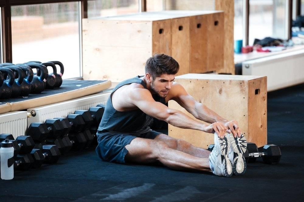 Программа тренировок в тренажерном зале после перерыва. возобновление тренировок после перерыва