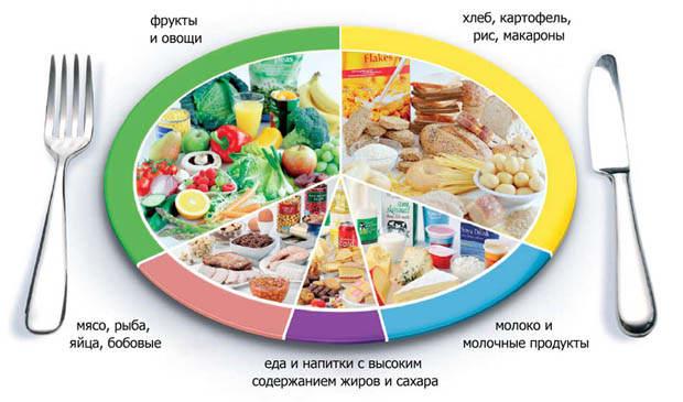 Сушка как эффективная жиросжигающая диета