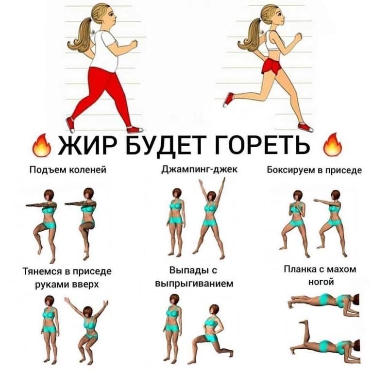 Упражнения для похудения для женщин: программы, комплексы, тренажёры