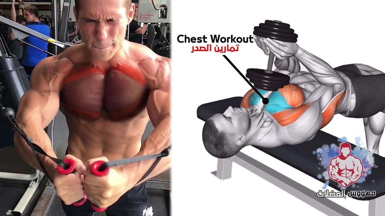 Лучшие упражнения для прокачки грудных мышц дома, которые можно выполнять с весом тела или с гантелями