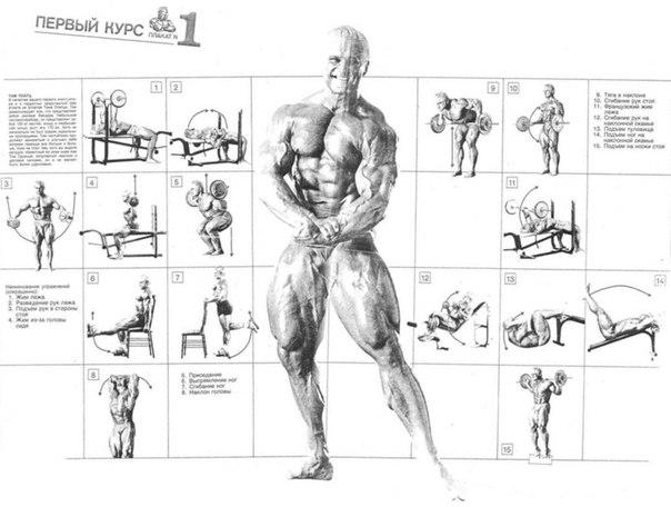 Программа тренировок джо вейдера: комплекс упражнений и тренировочные принципы