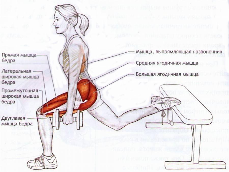Фронтальный присед или приседания со штангой на груди: правильная техника и вариации выполнения
