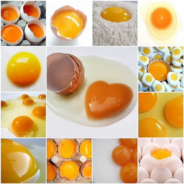 Что добавлять в котлеты - белок или желток? советы и рецепты приготовления