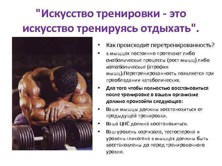 Как восстановить мышцы после тренировки и избавиться от боли в них - академия специалистов индустрии здоровья