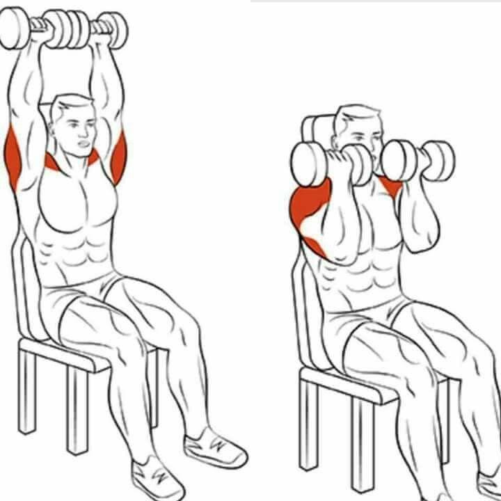 Упражнения для похудения рук в домашних условиях с гантелями и без них