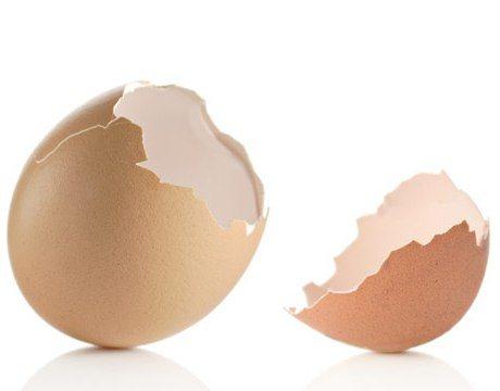 Яичная скорлупа: польза и вред