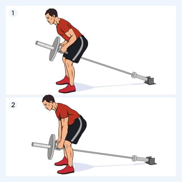 Становая тяга со штангой: как правильно делать?