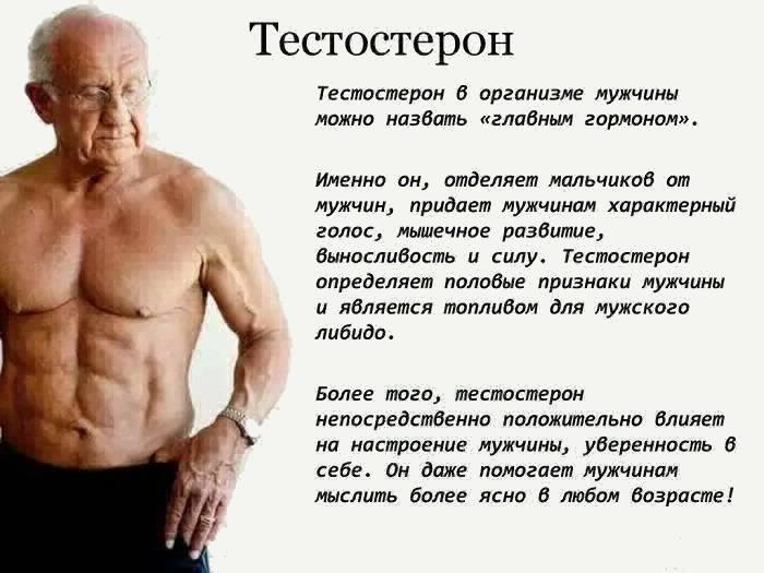 Как понизить уровень тестостерона у мужчин препаратами и народными средствами