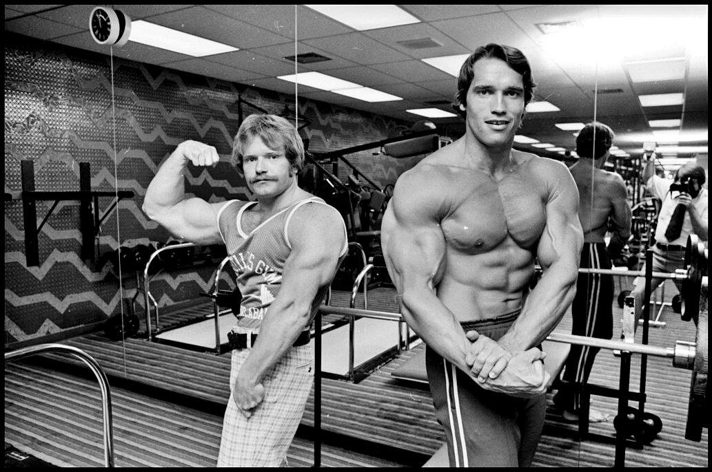 Домашняя тренировка арнольда шварценеггера - железные мышцы: все о бодибилдинге и фитнесе