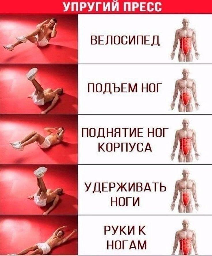 Как быстро накачать мышцы живота: лучшие упражнения на пресс в тренажерном зале