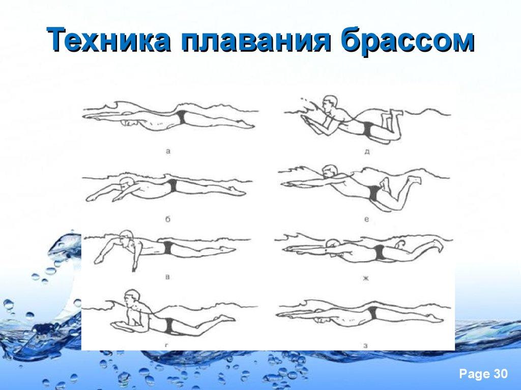 Как правильно плавать в бассейне - техника для начинающих взрослых и детей, учимся плыть быстро и не уставать