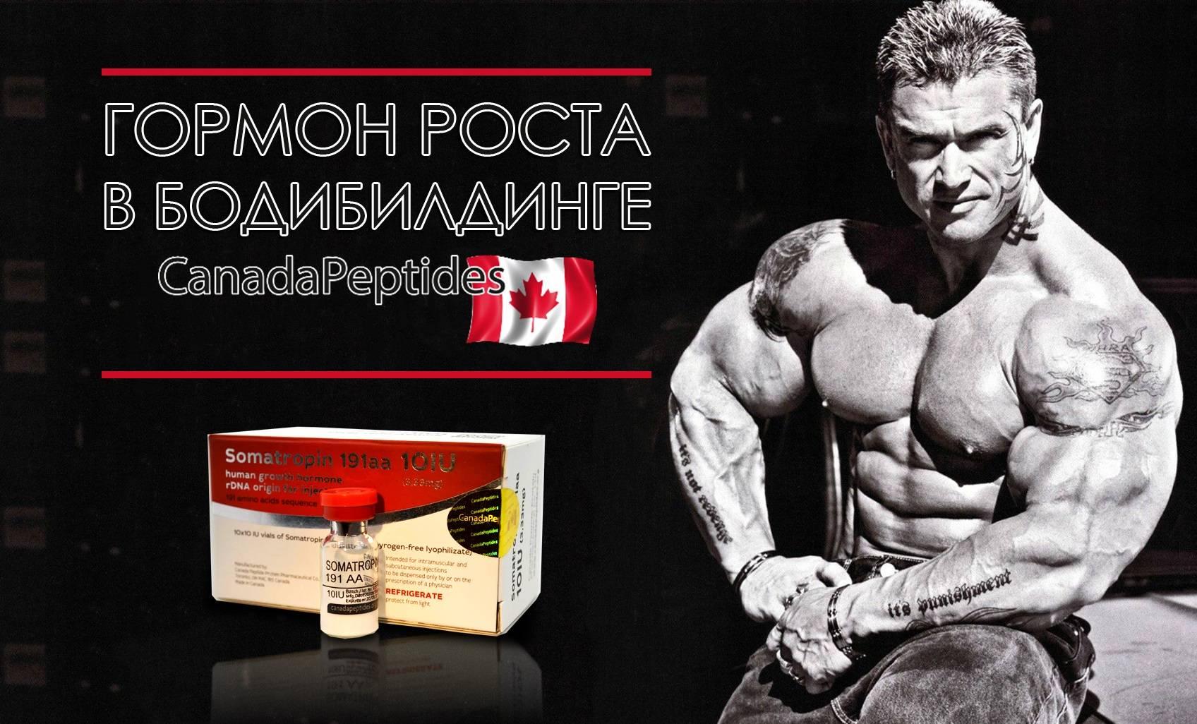 Лучшие препараты для набора мышечной массы, эффективные и безопасные