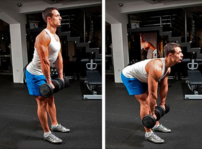 Румынская становая тяга со штангой: техника выполнения упражнения