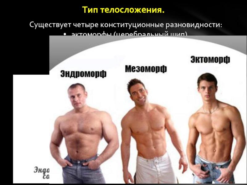 Эктоморф, мезоморф, эндоморф - как определить