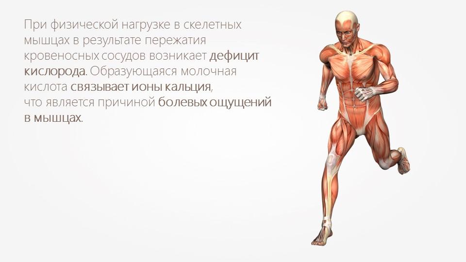 Молочная кислота в мышцах | как ее лучше вывести