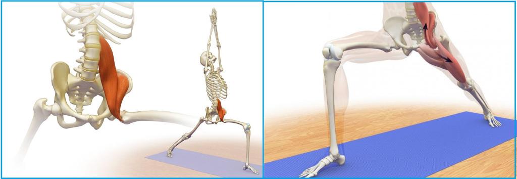 Синдром подвздошно-поясничной мышцы - упражнения, растяжка, релаксация | smartyoga: йога для здоровья и йогатерапия в москве