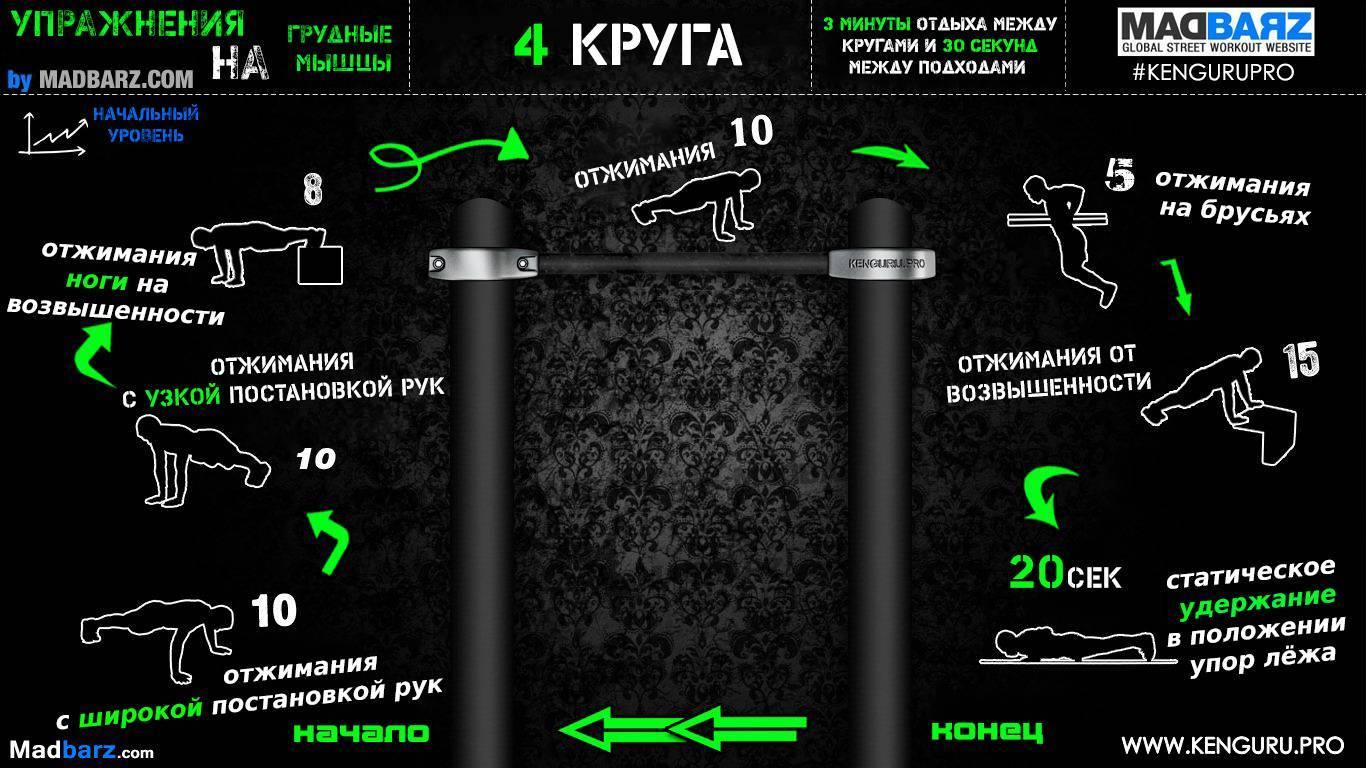 Программы тренировок воркаут для начинающих и опытных спортсменов - tony.ru