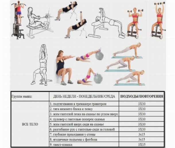 Лучший комплекс упражнений для спины в тренажерном зале для девушек, чтобы спина была рельефная и привлекательная