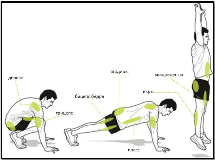 Упражнение берпи —как делать? правильная техника для новичков