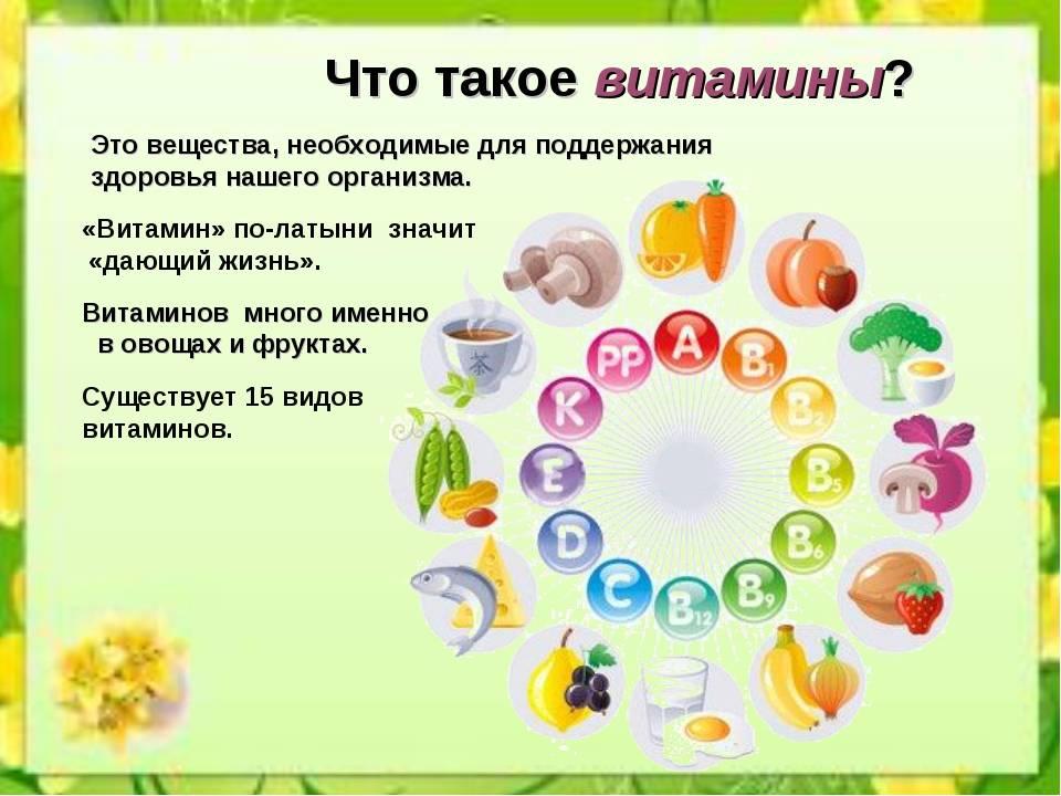В какое время дня, до еды или после еды лучше пить витамины: советы врача