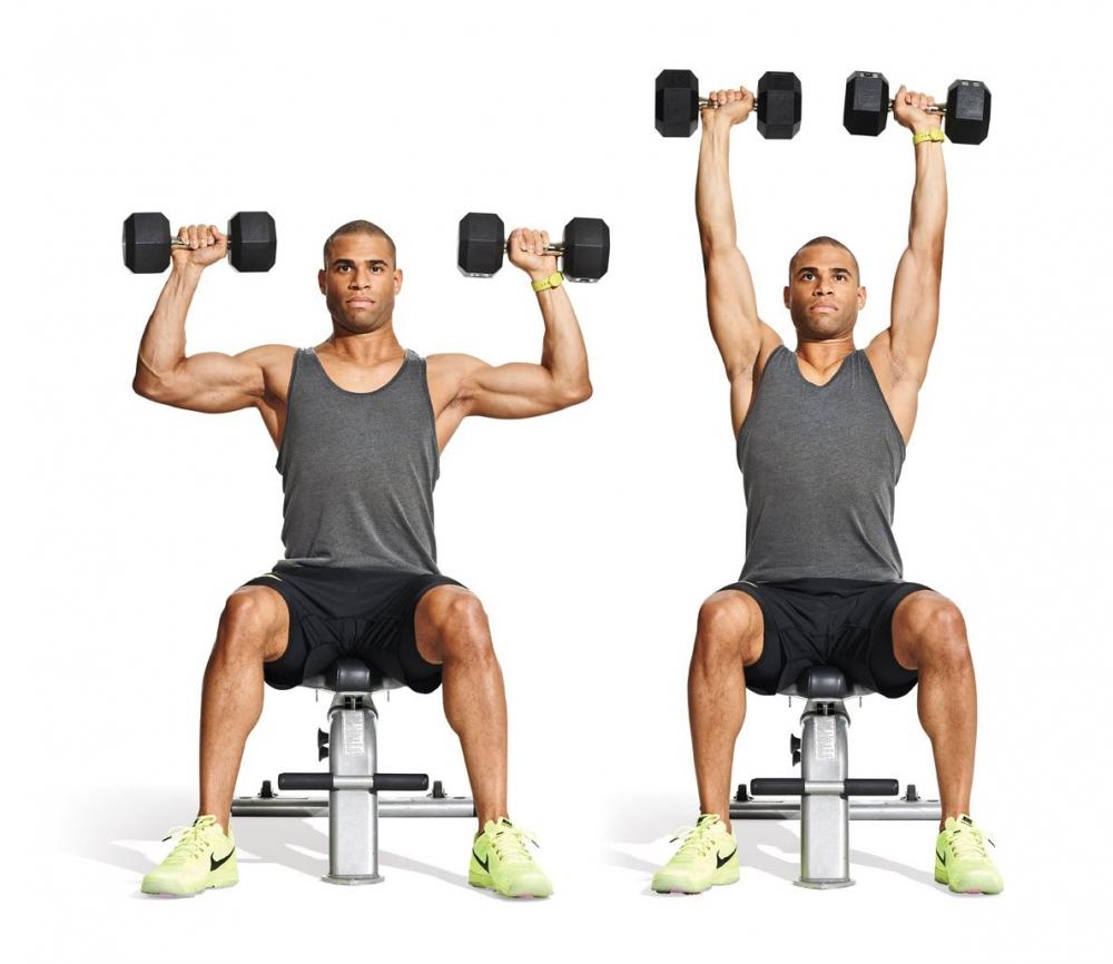 Жим гантелей сидя: фото и видео упражнения
