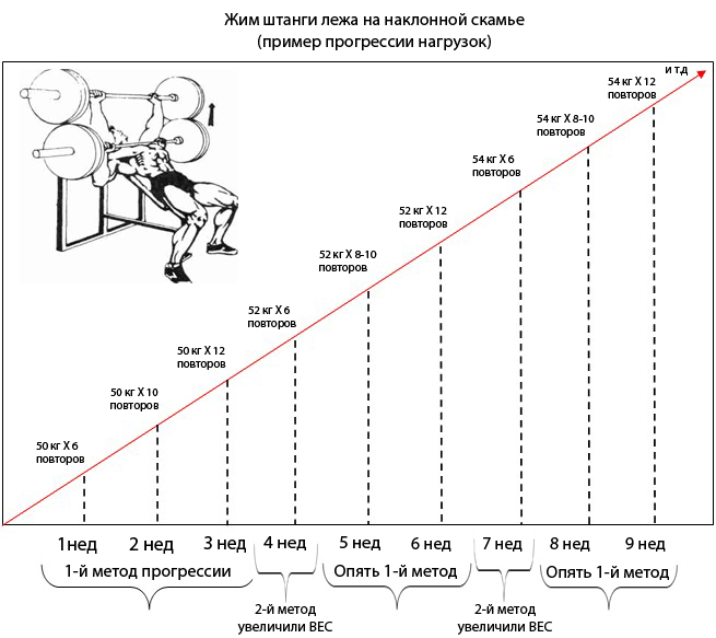 Циклирование нагрузок,периодизация тренировок,циклы в тренировочном процессе,микро макро циклы,принцип цикличности тренировочного процесса,периодизация спортивной тренировки,периодизация схема тренировок,тренировочный цикл