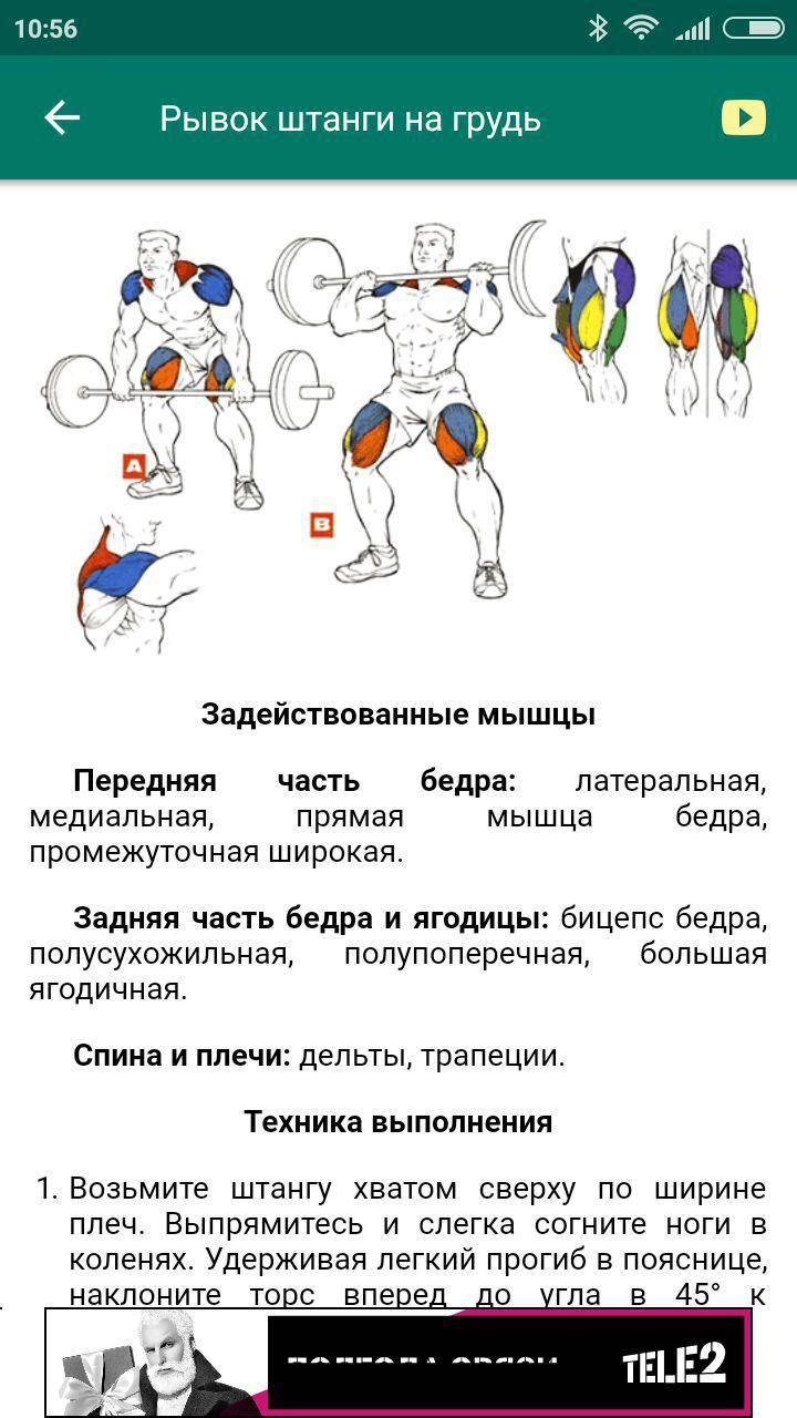 Швунг жимовой из-за головы: техника выполнения упражнения и кроссфит комплексы