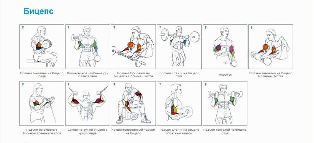 30 лучших упражнений без тренажёров для дома