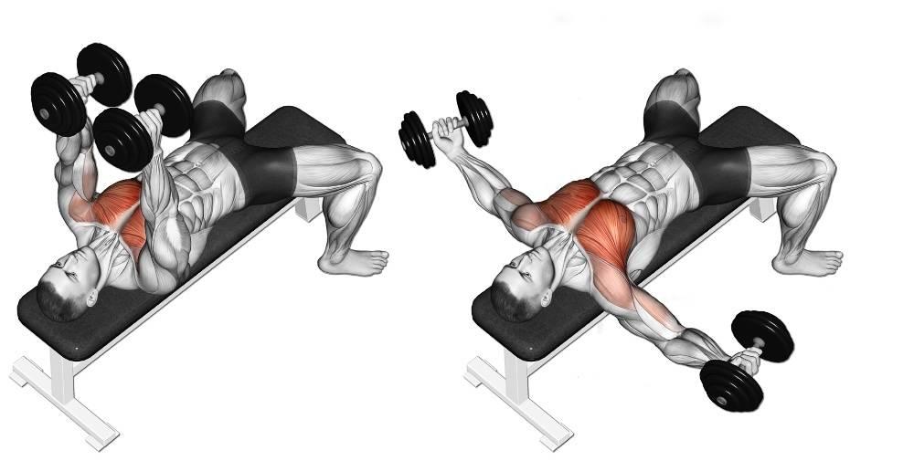 Разводка гантелей лежа: техника на горизонтальной скамье для грудных мышц