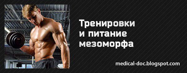 Программа тренировок по типу телосложения: для эктоморфа, эндоморфа и мезоморфа