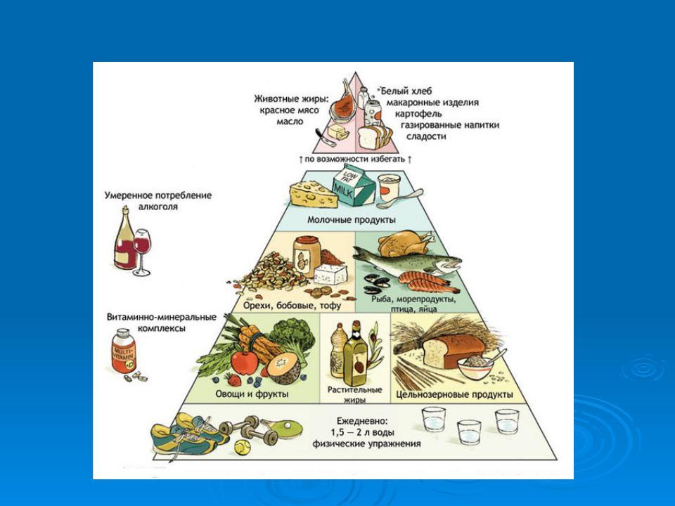 Пищевая пирамида для детей и взрослых