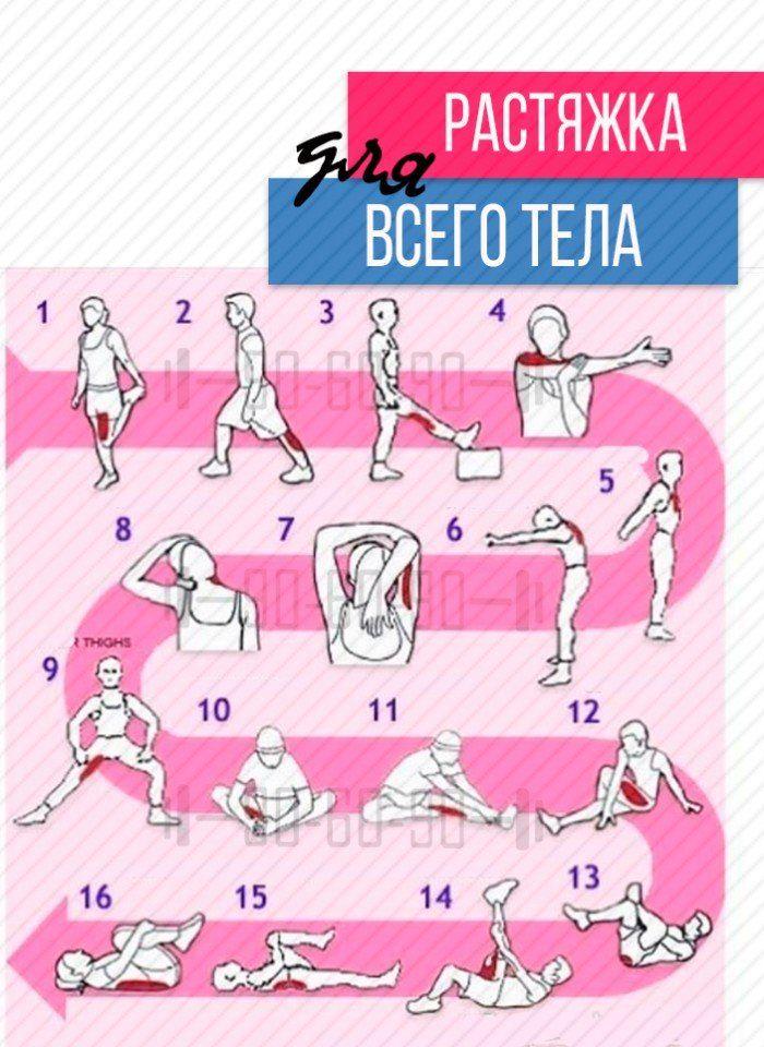 Стретчинг - комплекс упражнений для начинающих, дома