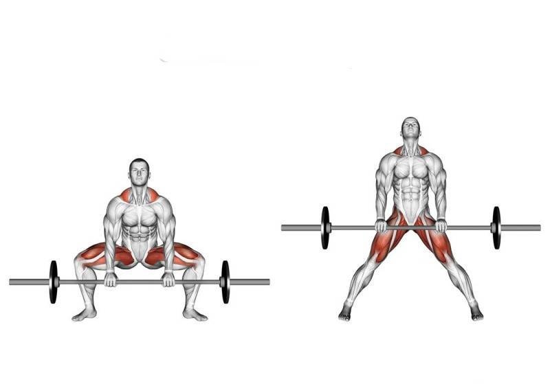 Фронтальные приседания: развиваем переднюю часть мышц ног
