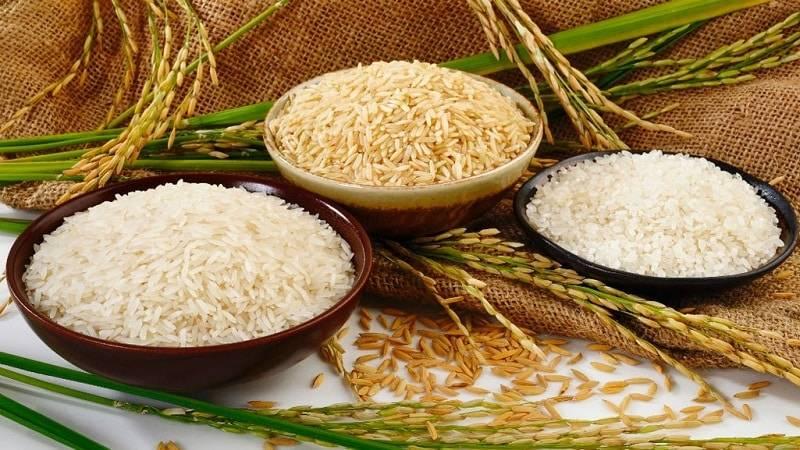 Рис - калорийность, польза и вред, полезные свойства