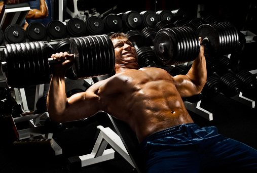 Полная программа тренировок на рост мышц