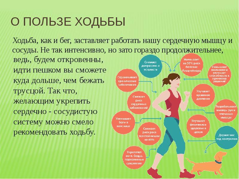 Полезные свойства ежедневной ходьбы, какое расстояние нужно проходить в день, чтобы похудеть