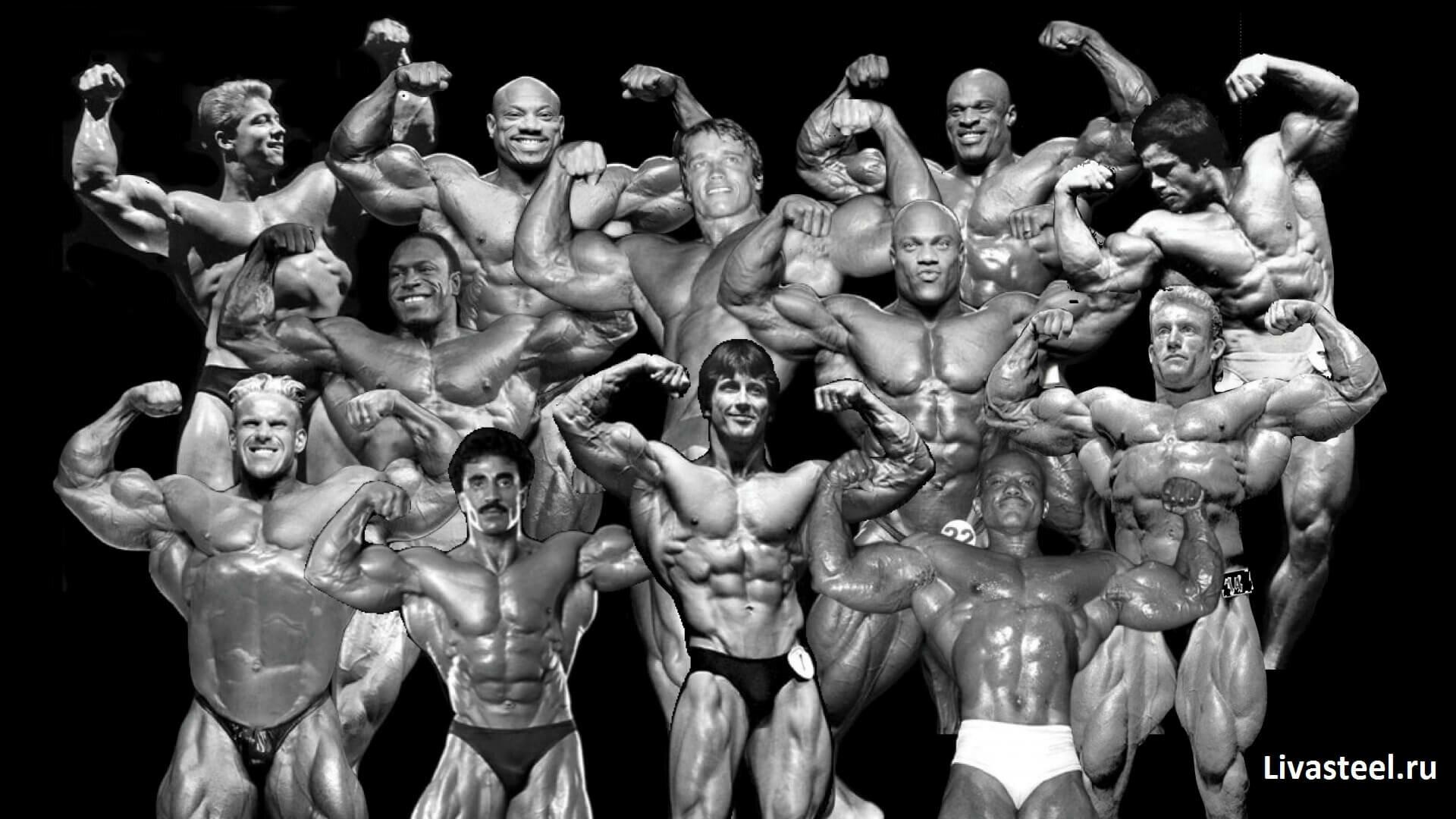 Все победители мистер олимпия за всю историю: таблица по годам