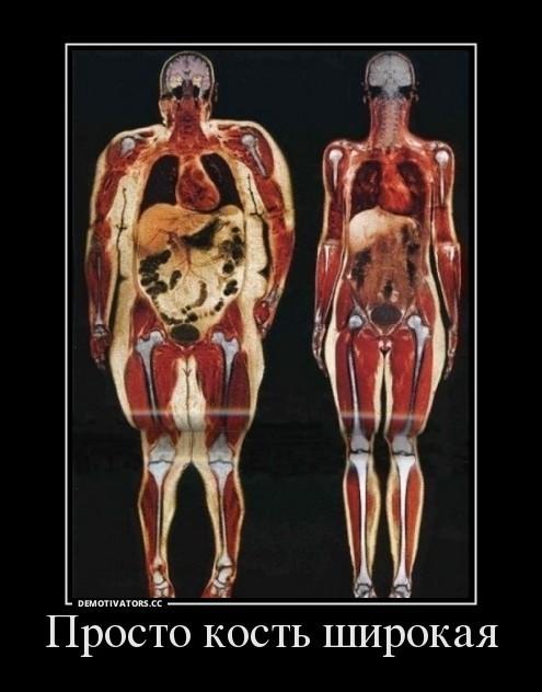 Почему у людей разные по весу кости - все обо всем