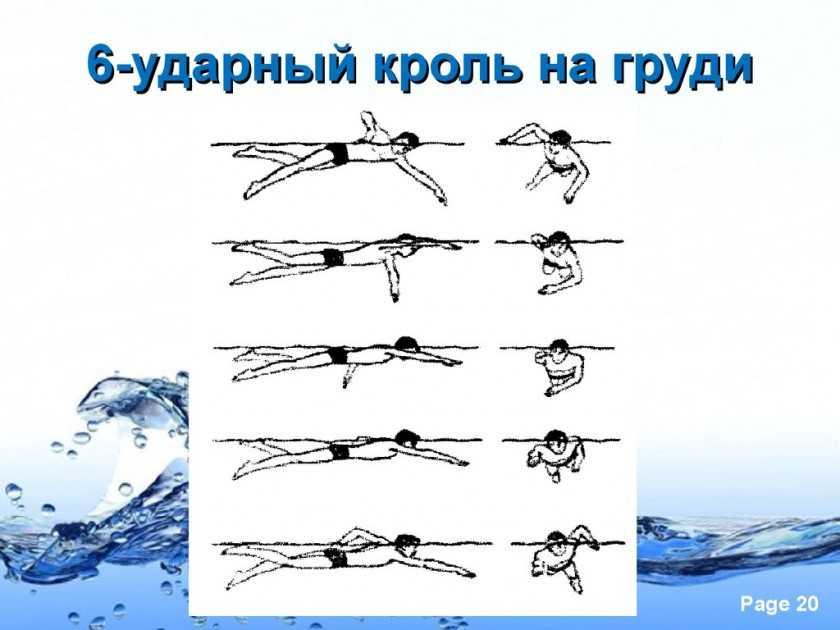 Техника плавания стилем баттерфляй: самый эффектный и сложный стиль