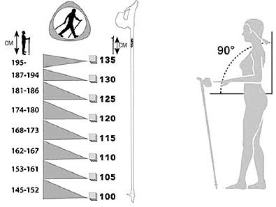Палки для скандинавской ходьбы: как выбрать