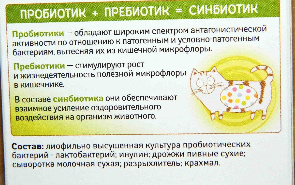Пробиотики и пребиотики - список препаратов, отличия, эффекты, показания к применению