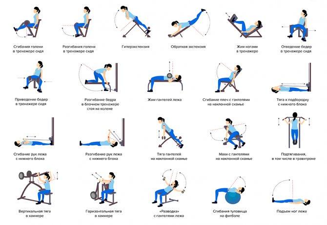 Лфк при сколиозе у детей: комплекс необходимых упражнений