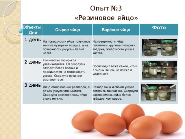 Чем отличаются белые куриные яйца от коричневых, какие лучше: что влияет на интенсивность окраса и толщину скорлупы, желтка, белка, размер яиц, чистку?